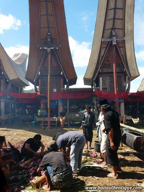 sulawesi tomate funeraire toraja ceremonie preparation