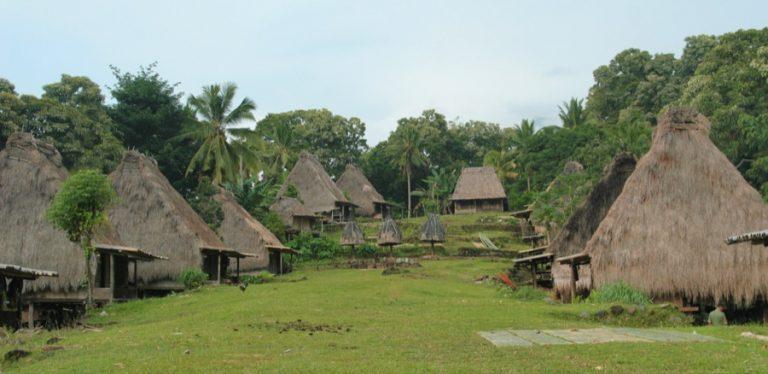 village traditionnel Belaraghi Flores