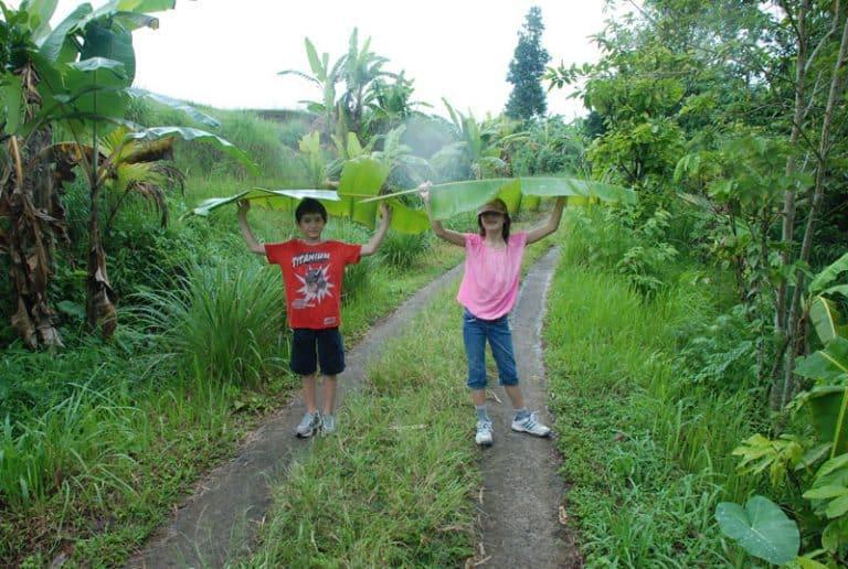 balade jungle bali avec enfants