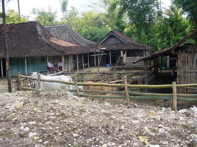 village javanai ile indonesie maison
