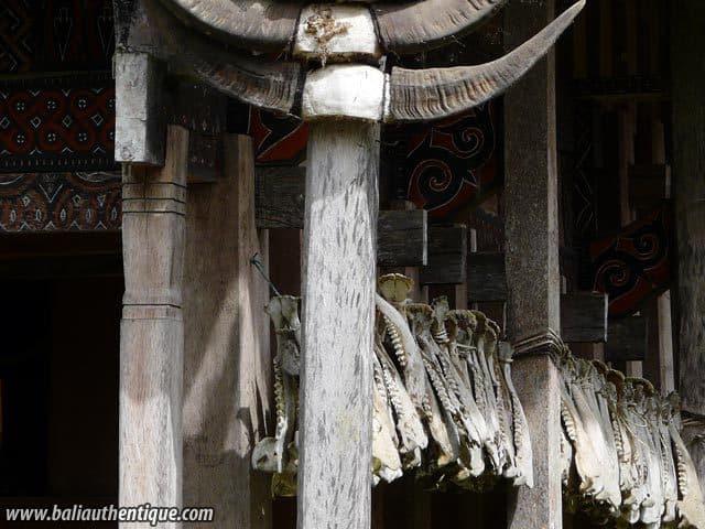 village kete kesu toraja culture indonesie