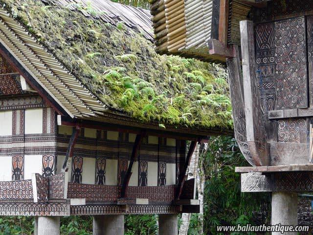 village kete kesu toraja maisons traditionnelles