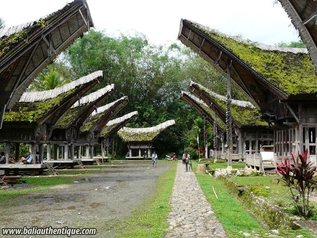 village kete kesu toraja rue traditionnelle