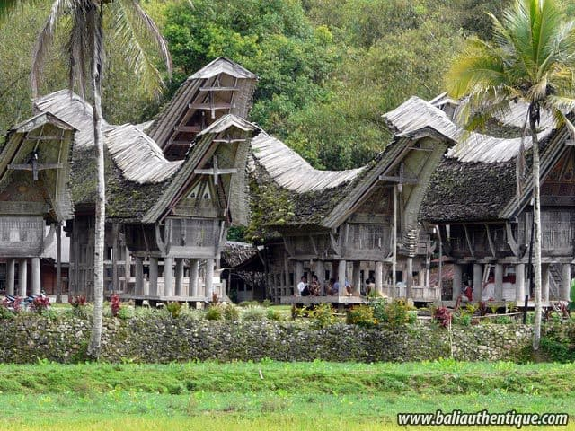 village kete kesu toraja typique