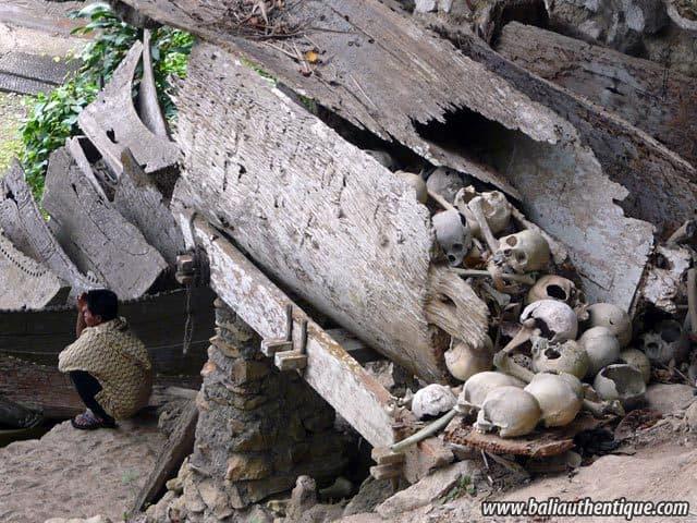 village traditionnel kete kesu toraja squelettes