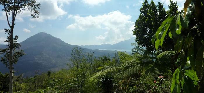 volcan batur bali vegetation panoramique