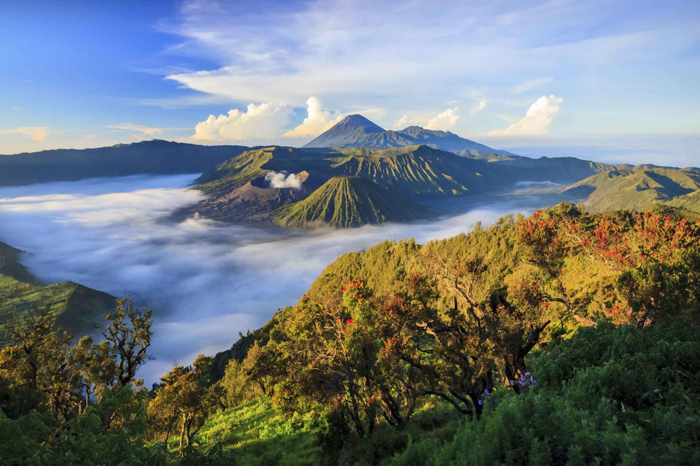 volcan bromo bali panorama